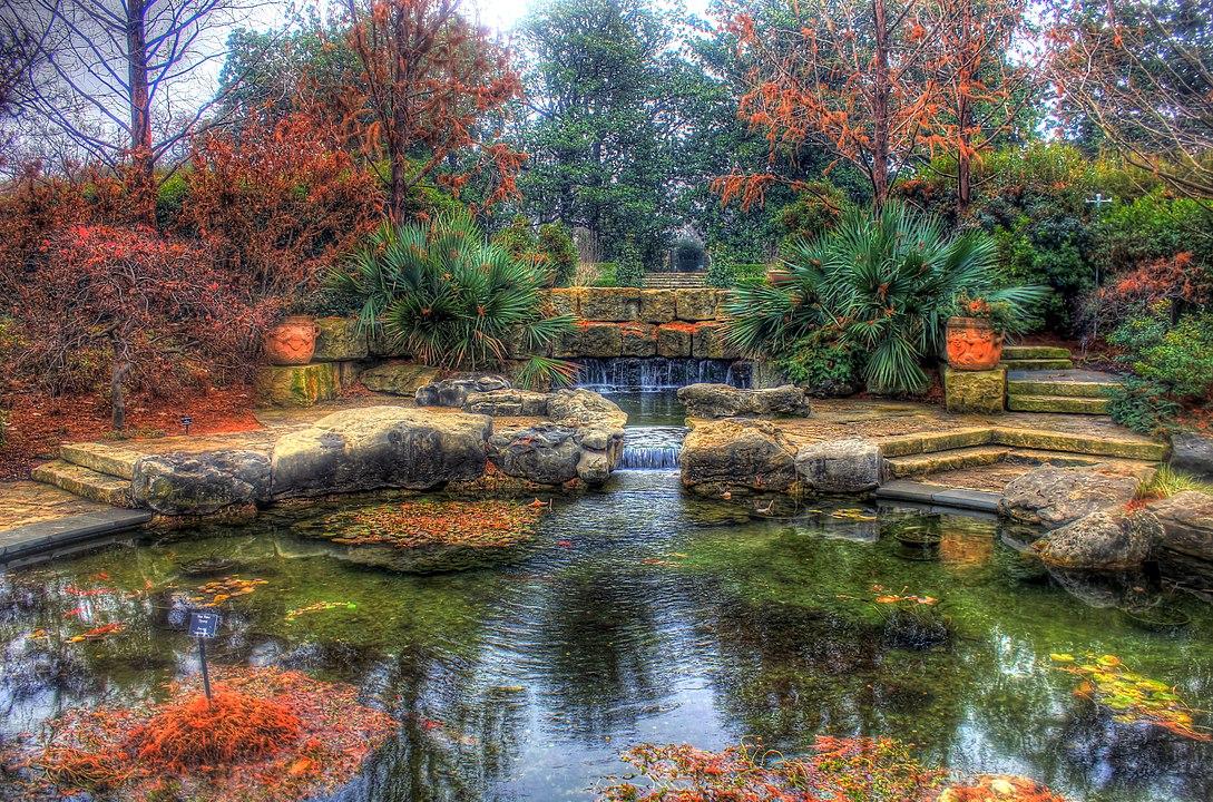 A dallas pond landscape by Yinan Chen